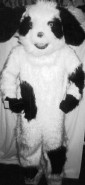 Story Book and Nursery Rhyme Costumes - Sheep Dog - American Costumes Las Vegas