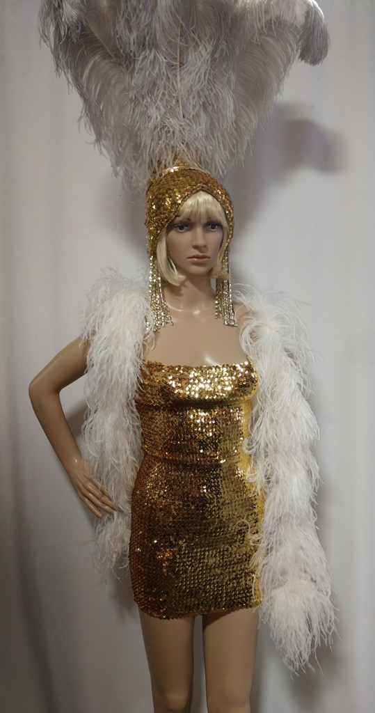 Las Vegas Costumes Las Vegas Showgirl Costume in Gold and White - American Costumes Las Vegas