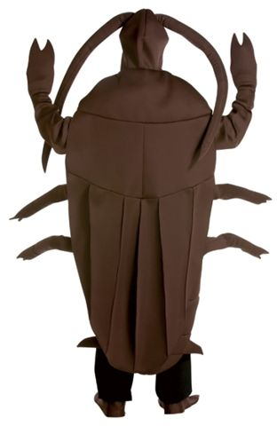 Insect Costumes - American Costumes Las Vegas